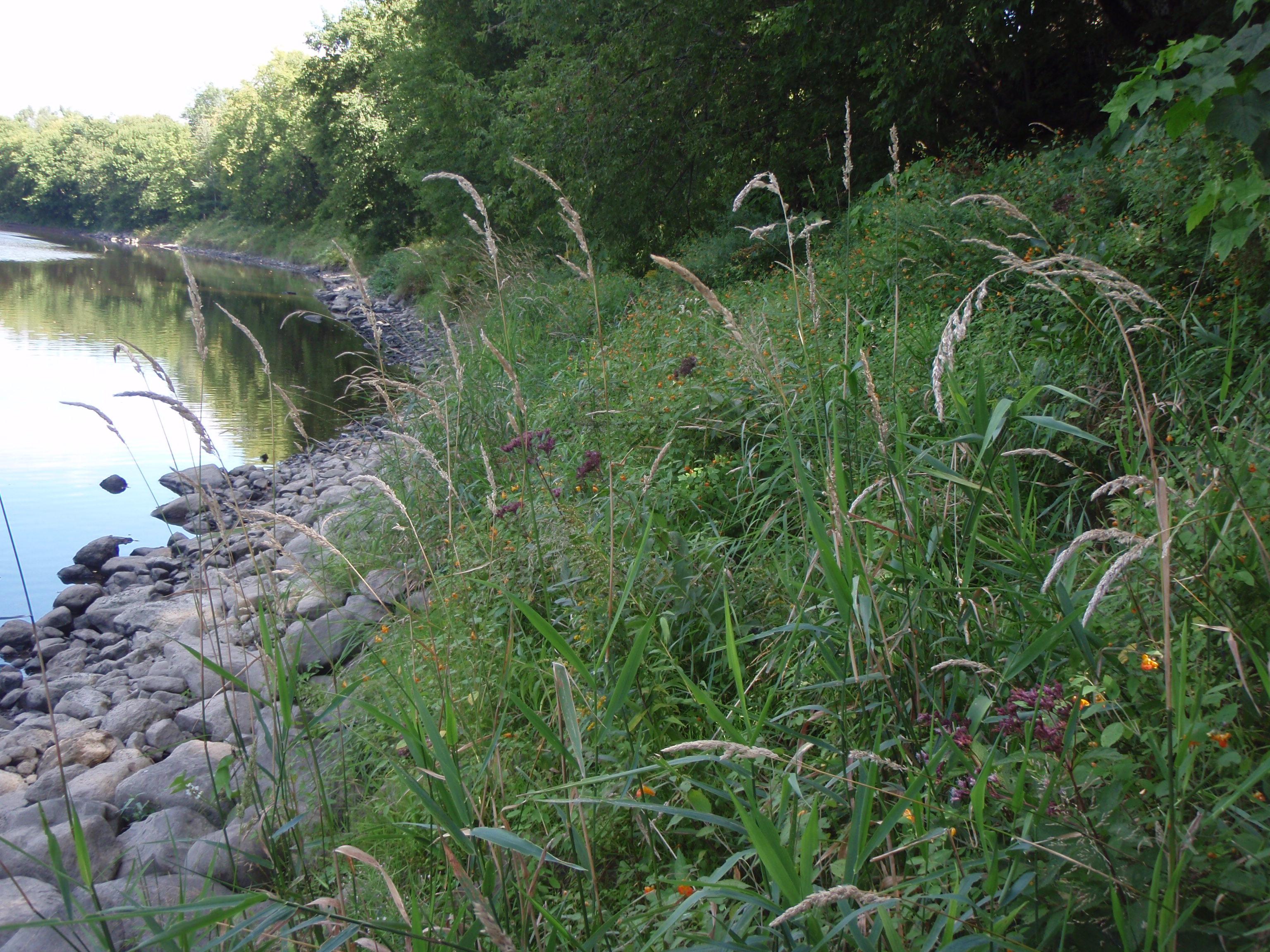 Rivière Noire - Suite aux travaux